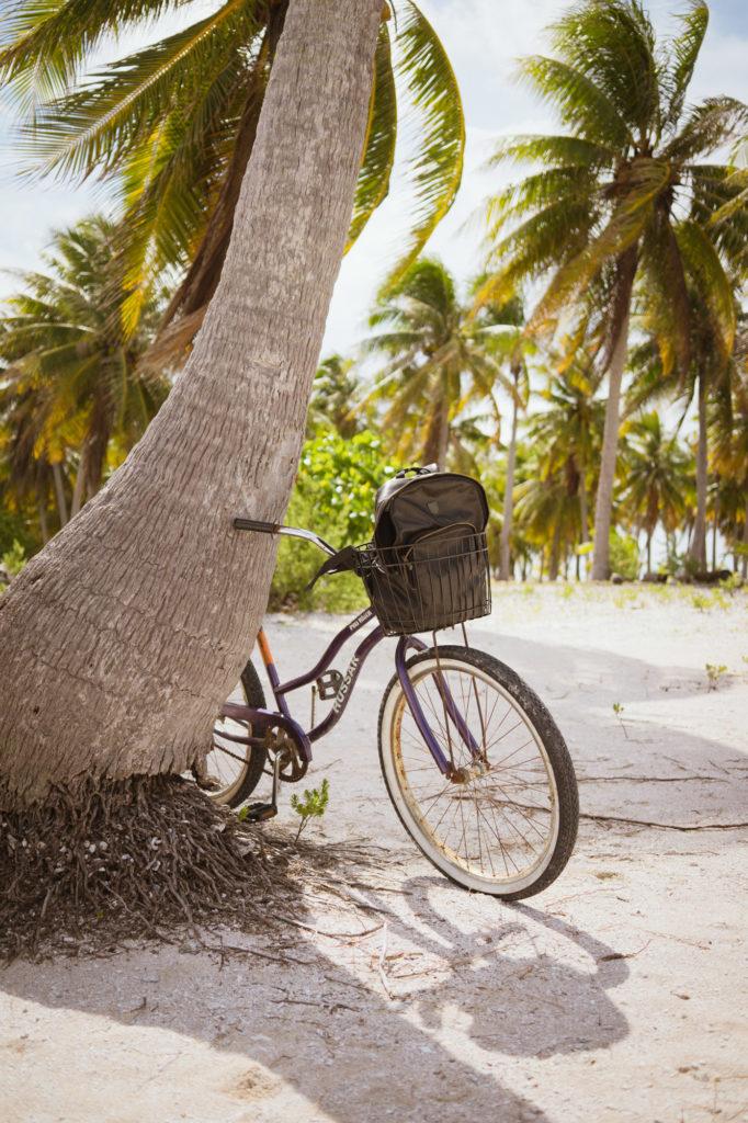 Vélo contre le tronc d'un cocotier sur la plage, à Tikehau, Polynésie française