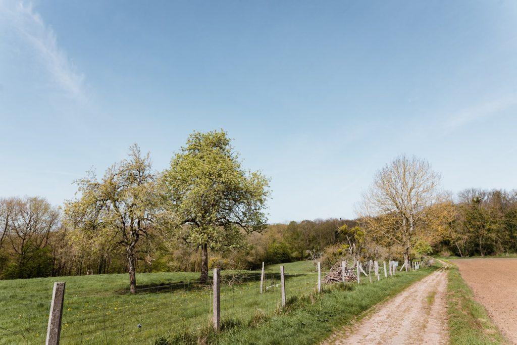 Balade dans la Haute Vallée de Chevreuse dans les Yvelines - Idée de week-end nature en Île-de-France