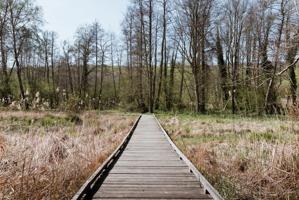 Le Sentier de Maincourt dans la vallée de Chevreuse dans les Yvelines - Idée de week-end nature en Île-de-France