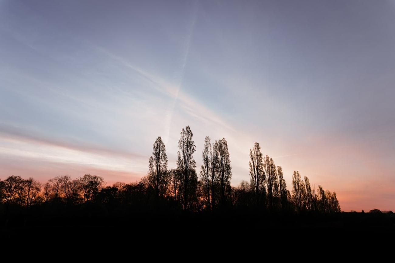 Lever de soleil à Magny les Hameaux, dans les Yvelines - Idée de week-end nature en Île-de-France