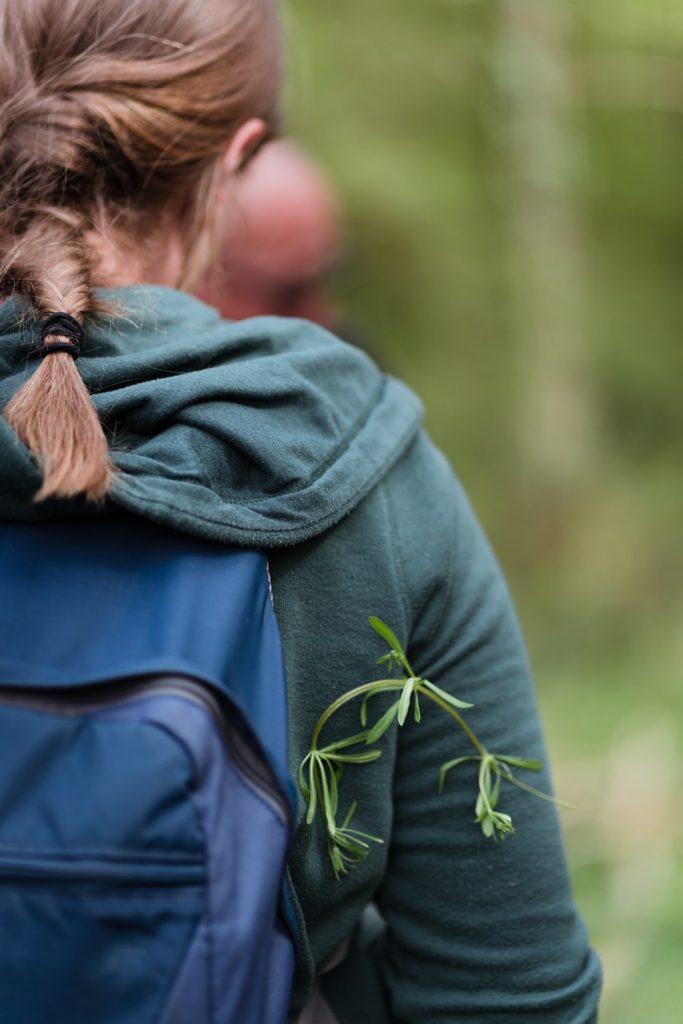 """Activité """"reconnaître les plantes sauvages comestibles"""" en Haute Vallée de Chevreuse dans les Yvelines - Idée de week-end nature en Île-de-France"""